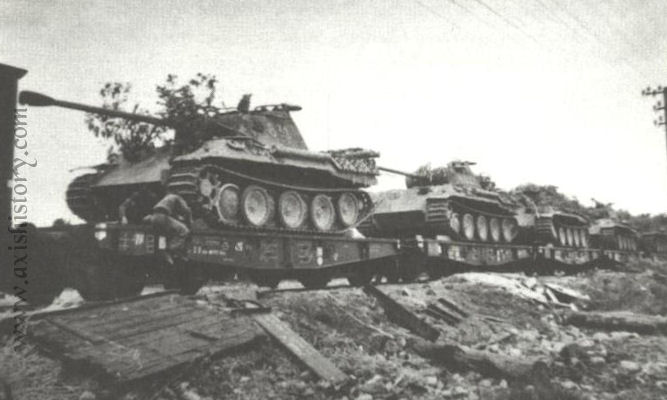 wss-11-panthers-train.jpg